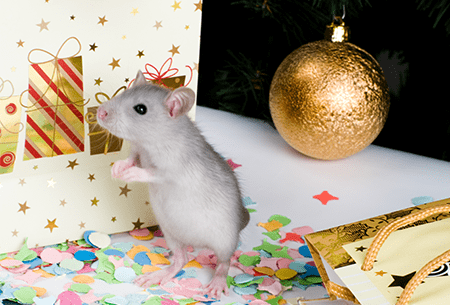mouse next to holiday tree and presents